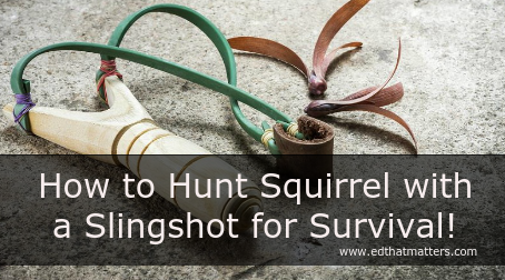 How to Hunt Squirrel with a Slingshot for Survival!