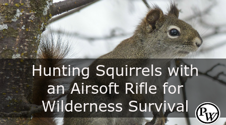 Hunting Squirrels with an Airsoft Rifle for Wilderness Survival